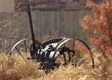 Sibley lawn mower