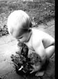 Sam -gardening in his birthday suit!