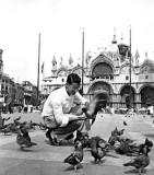 Birdman of Venice