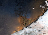 reflection in melted snow.jpg
