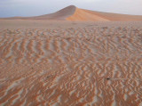 dune at early dawn.jpg