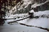 frozen creek.png