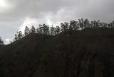 ridgeline.jpg