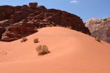 2487 Voyage en Jordanie - IMG_2992 Pbase.jpg