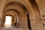 215 Voyage en Jordanie - IMG_0686_DxO Pbase.jpg