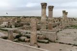 356 Voyage en Jordanie - IMG_0831_DxO Pbase.jpg