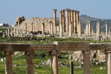 636 Voyage en Jordanie - IMG_1120_DxO Pbase.jpg