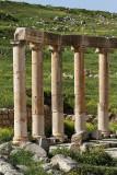 639 Voyage en Jordanie - IMG_1123_DxO Pbase.jpg