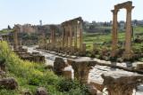 664 Voyage en Jordanie - IMG_1148_DxO Pbase.jpg