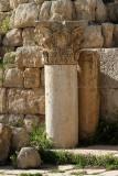 675 Voyage en Jordanie - IMG_1161_DxO Pbase.jpg