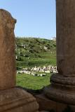 725 Voyage en Jordanie - IMG_1211_DxO Pbase.jpg
