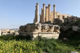 864 Voyage en Jordanie - IMG_1350_DxO Pbase.jpg