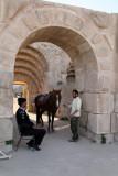 885 Voyage en Jordanie - IMG_1371_DxO Pbase.jpg