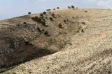 1015 Voyage en Jordanie - IMG_1516_DxO Pbase.jpg