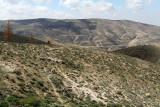 1017 Voyage en Jordanie - IMG_1518_DxO Pbase.jpg