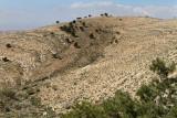 1019 Voyage en Jordanie - IMG_1520_DxO Pbase.jpg