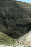 1111 Voyage en Jordanie - IMG_1620_DxO Pbase.jpg