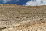 1151 Voyage en Jordanie - IMG_1661_DxO Pbase.jpg
