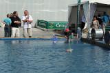 2 Volvo Ocean Race - Groupama 4 baptism - bapteme du Groupama 4 MK3_8918_DxO WEB.jpg