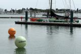 265 Volvo Ocean Race - Groupama 4 baptism - bapteme du Groupama 4 MK3_9091_DxO WEB.jpg