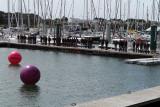 294 Volvo Ocean Race - Groupama 4 baptism - bapteme du Groupama 4 IMG_5275_DxO WEB.jpg