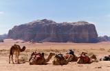 2061 Voyage en Jordanie - IMG_2561_DxO WEB.jpg