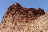 2067 Voyage en Jordanie - IMG_2567_DxO WEB.jpg