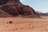 2084 Voyage en Jordanie - IMG_2584_DxO WEB.jpg