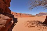 2136 Voyage en Jordanie - IMG_2633_DxO WEB.jpg