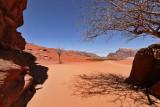 2137 Voyage en Jordanie - IMG_2634_DxO WEB.jpg