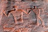 2153 Voyage en Jordanie - IMG_2650_DxO WEB.jpg