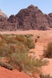 2180 Voyage en Jordanie - IMG_2677_DxO WEB.jpg