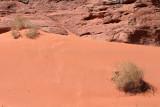2201 Voyage en Jordanie - IMG_2699_DxO WEB.jpg