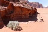 2241 Voyage en Jordanie - IMG_2739_DxO web2.jpg