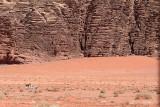 2251 Voyage en Jordanie - IMG_2750_DxO web2.jpg
