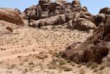 2316 Voyage en Jordanie - IMG_2818_DxO web2.jpg