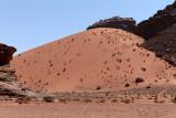 2466 Voyage en Jordanie - IMG_2971_DxO web2.jpg