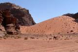 2469 Voyage en Jordanie - IMG_2974_DxO web2.jpg