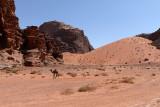 2471 Voyage en Jordanie - IMG_2976_DxO web2.jpg