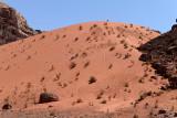 2476 Voyage en Jordanie - IMG_2981_DxO web2.jpg
