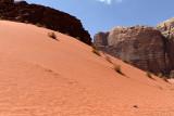 2485 Voyage en Jordanie - IMG_2990_DxO web2.jpg