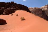 2488 Voyage en Jordanie - IMG_2993_DxO web2.jpg