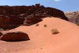 2489 Voyage en Jordanie - IMG_2994_DxO web2.jpg