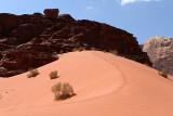 2496 Voyage en Jordanie - IMG_3001_DxO web2.jpg