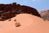 2497 Voyage en Jordanie - IMG_3002_DxO web2.jpg