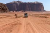 2533 Voyage en Jordanie - IMG_3040_DxO web2.jpg