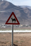 2560 Voyage en Jordanie - IMG_3068_DxO web2.jpg