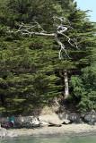 4552 Semaine du Golfe 2011 - Journ'e du vendredi 03-06 - IMG_4223_DxO web.jpg