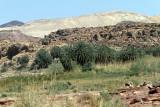 2981 Voyage en Jordanie - IMG_3515_DxO web.jpg