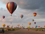 223 Lorraine Mondial Air Ballons 2011 - IMG_8247_DxO Pbase.jpg